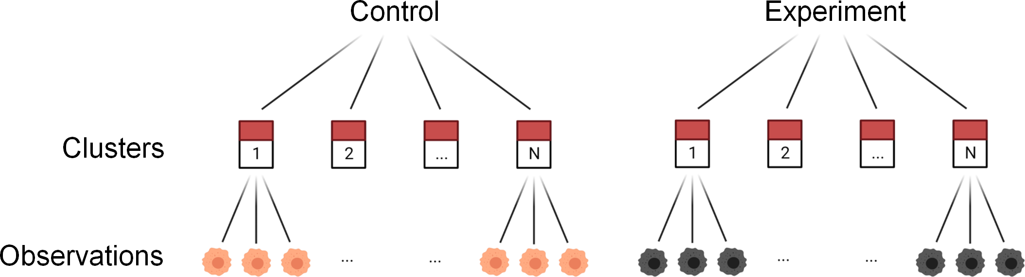 Schematic of a typical biological experiment design, generating nested data