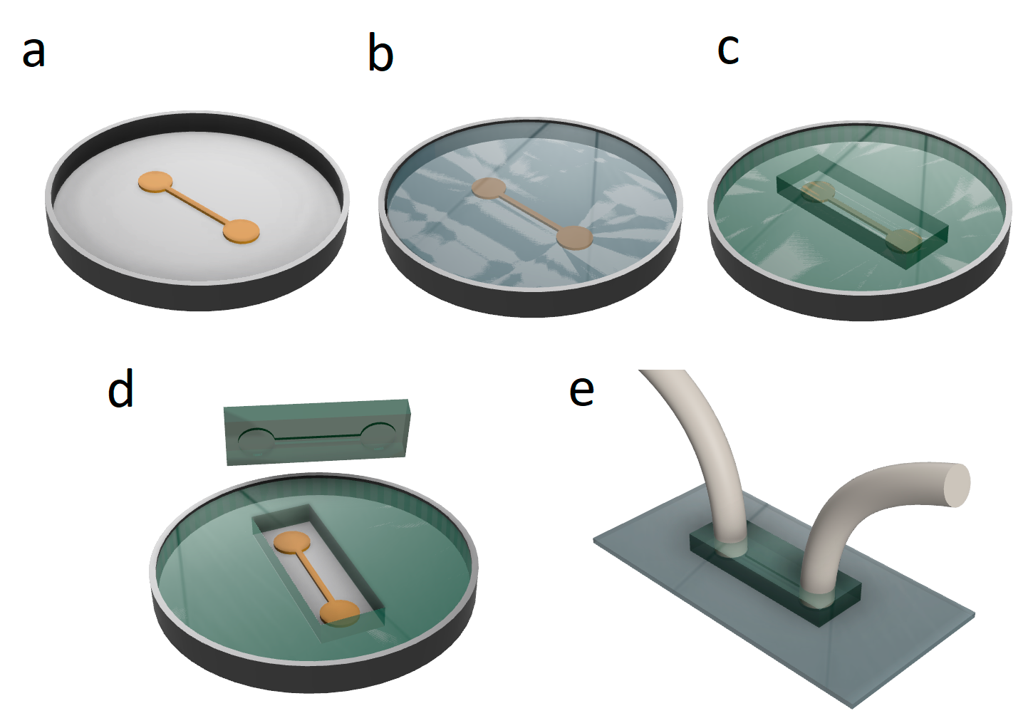 Fabrication of PDMS-based flow chamber: a) A master mold is prepared using photolithography. The relief (typically made of photoresist on a silicon wafer, shown in orange) usually contains several patterns to be imprinted on PDMS; b) The relief form (master mold) is poured with the liquid mixture of PDMS base with curing agent; с-d) A part of polymerized PDMS is then сut and extracted from the mold e) inlet and outlet holes are made and the required tubings are connected. The chamber is attached onto the glass or plastic coverslip (gray) using plasma bonding or vacuum-sealing.