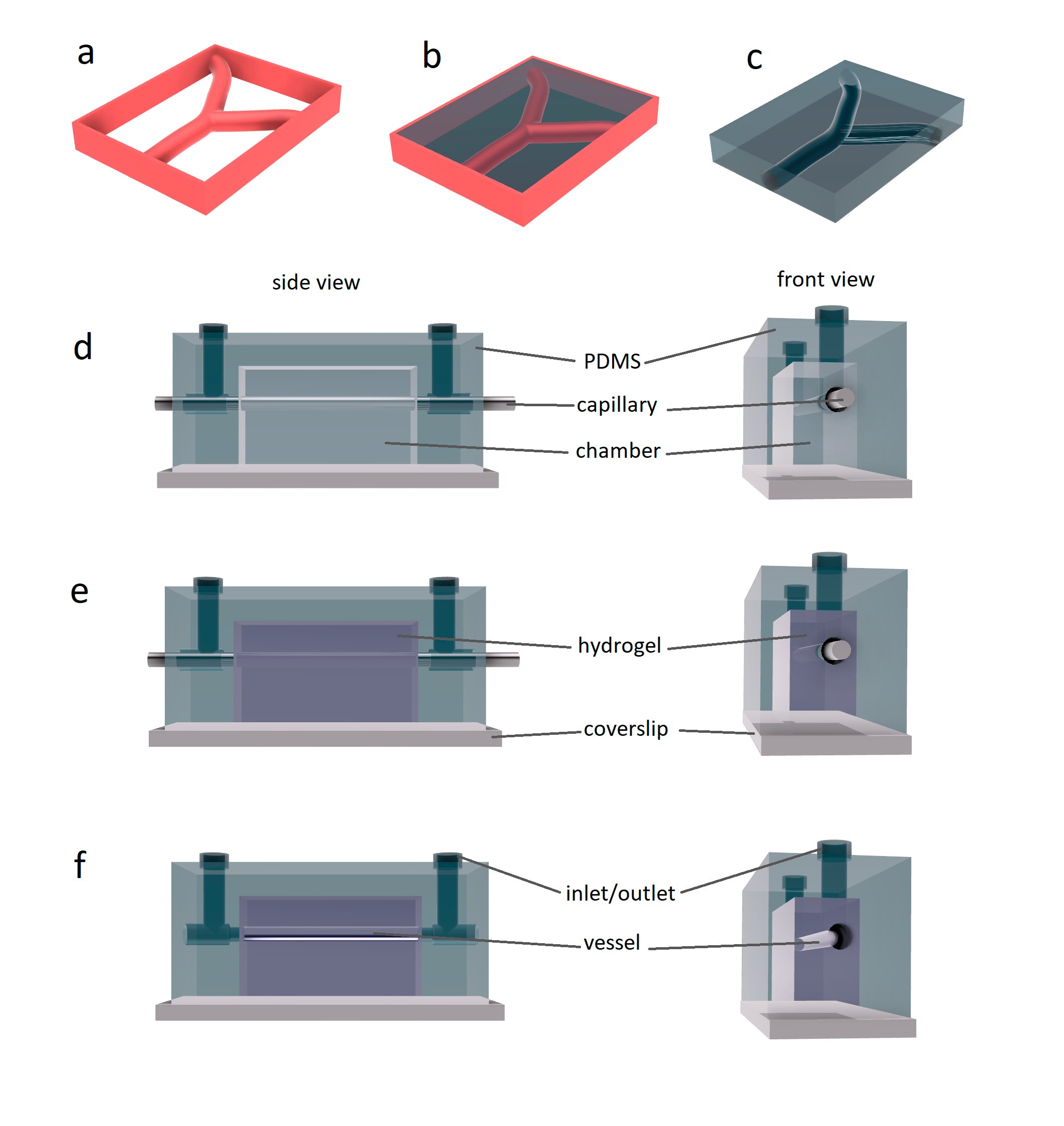 Various approaches for using hydrogels to fabricate artificial vessels. a) - c): bioprinting of vascularized hydrogels, schematic of the bioprinting process (adapted from [12]). a) bioprinting vessels and the wall; b) scaffold for GelMA; c) final GelMA block after curing with ultraviolet light and dissolving of the sacrificial layer (made from pluronic). d) - f): the tissue-engineered 3D microvessel, schematic of the construction process: d) PDMS mold, which contains input and output ports, is vacuum-sealed to the glass slide and serves as the shell. Cylindrical template rod (e.g. glass capillary) is positioned in the middle of the chamber into the special functional holes; e) PDMS mold is filled with hydrogel in a liquid state; f) after the gelation, the rod is physically removed by pulling it out from one side. After the removal of the template rod, the chamber is ready to use for blood/plasma perfusion or could be perfused for endothelial cell seeding and cultivation. Adapted from [9].