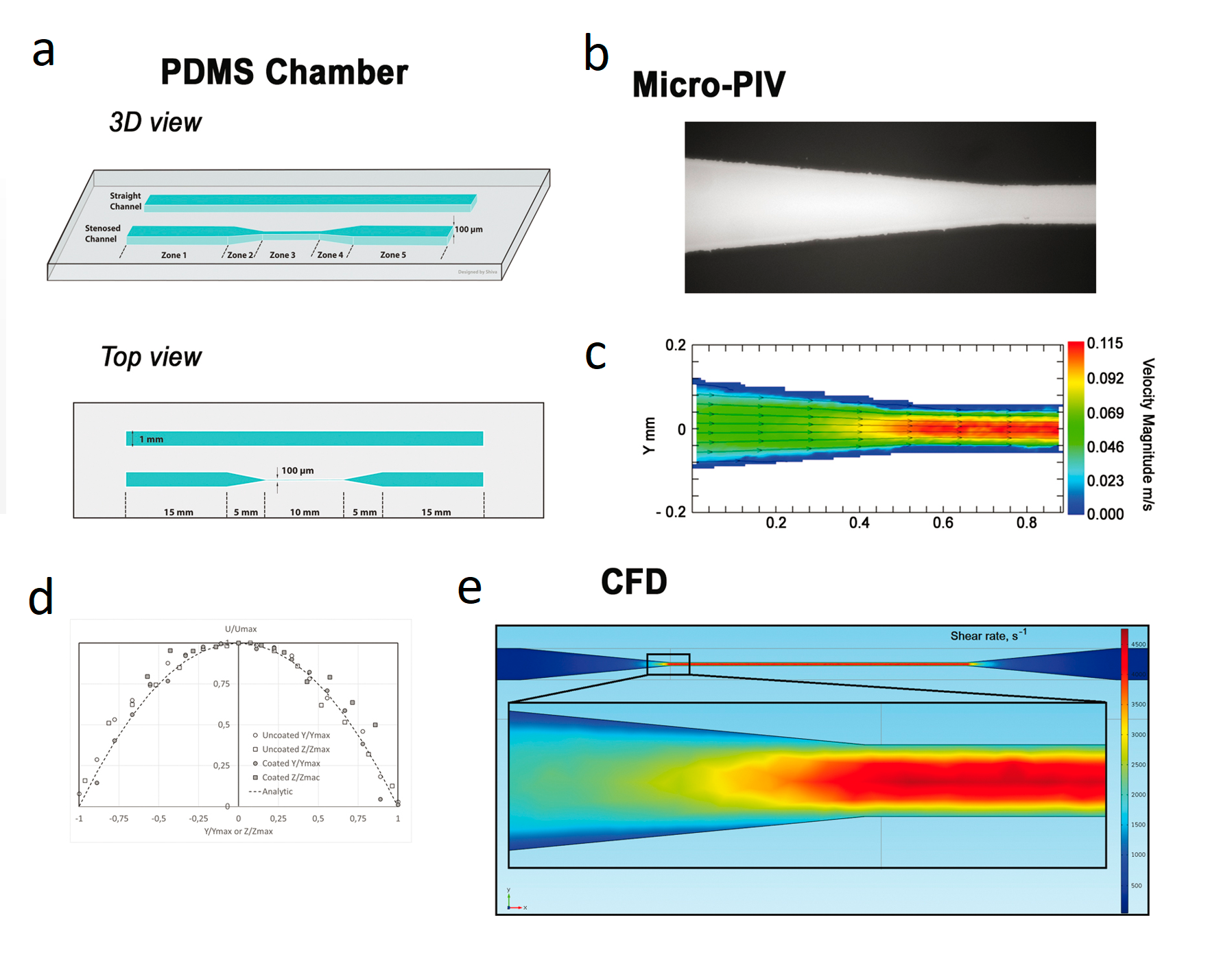 Schematic of a microfluidic flow chamber designed to generate shear gradients. (а) Schematic of a polydimethylsiloxane (PDMS) microfluidic flow chamber containing a straight rectangular channel 1 mm wide and 0.1 mm height, and a stenotic channel of similar dimensions, but providing a 90% width reduction in the central region (zone 3). Zones 1 through 5 are labeled in the bottom of the schematics showing 3D view. (b) Microphotograph of a microfluidic flow chamber from a fluorescent microscope: transition from zone 2 to zone 3 of the stenotic channel. Image was obtained with x20 objective. (c) Map of velocity magnitude at mean height in the stenotic canal, obtained using velocimetry imaging of microparticles: transition from zone 2 to zone 3. (d) Dimensionless velocity profiles U⁄Umax as a function of Y⁄Ymax or Z ⁄Zmax (U is the magnitude velocity, Ymax - stenosis half-width, Zmax - half-height) at the average height and average width of the microfluidic flow chamber in zone 3. (e) Computational fluid dynamics analysis representing the shear rate at the bottom of the chamber (z = 0) throughout the chamber and in the enlarged area, corresponding to the entrance to zone 3. The geometry of the channel in the computational fluid dynamics (CFD) model corresponded to the stenotic version of the chamber shown in panel (a). Figure adapted from [20].